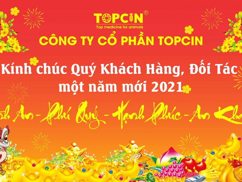 TOPCIN – Chúc Mừng Năm Mới Tân Sửu 2021